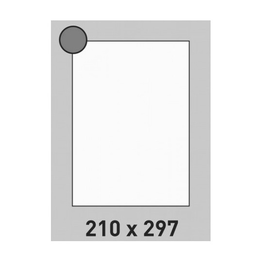 Etiquette en planche 210 x 297 mm-100 étiquettes-Réf : 1393